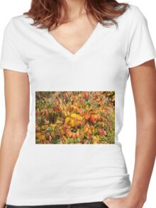 Autumn's Paint Brush Women's Fitted V-Neck T-Shirt