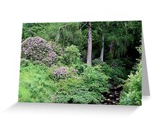 Garden and stream, highlands,Scotland Greeting Card