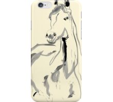 Horse - Arab  iPhone Case/Skin
