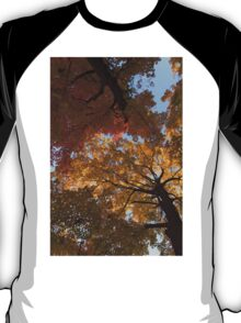 Colourful Autumn Duet T-Shirt