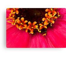 Flowers Within The Flower - Macro  Canvas Print