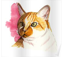 Orange Tabby Cat Watercolor Painting Poster