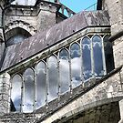 Chartres Cathedral ( 4 ) by Larry Lingard-Davis
