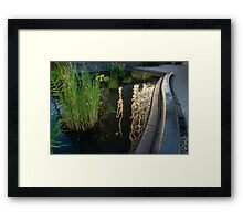 New York Skyscrapers Reflecting in a Beautiful Water Garden Framed Print