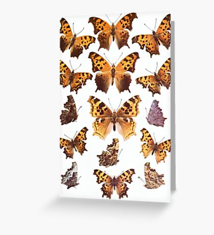 The Butterfly Book Collage I Greeting Card