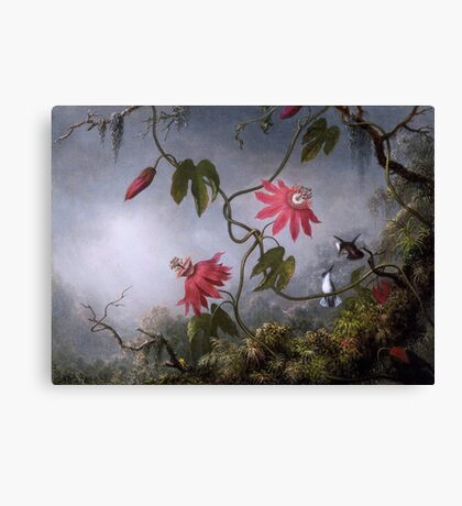 Passion Flowers with Hummingbirds Canvas Print
