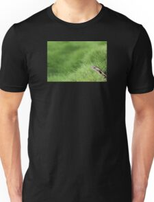 Lizard Pickaboo Unisex T-Shirt