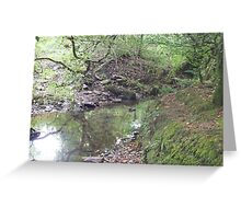 The dreaming stream. Greeting Card