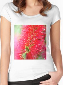 Bottlebrush after the rain Women's Fitted Scoop T-Shirt