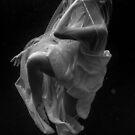 Romi-Submerged6 by Gavin Poh