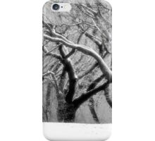 The Dance of Nature iPhone Case/Skin