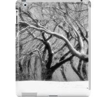 The Dance of Nature iPad Case/Skin