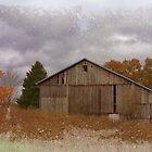 Scenic Barn in field by vigor