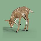 Roe a Deer by Catherine Hamilton-Veal  ©