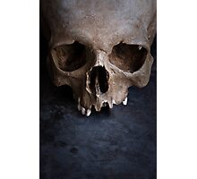 Male skull on rusty metal  Photographic Print
