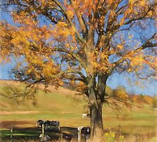 Enjoying The Autumn Shade by Lois  Bryan