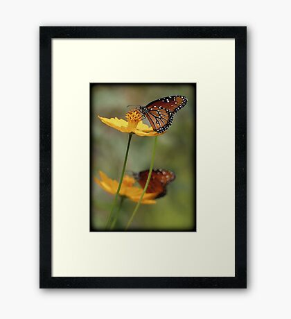 Double Royalty Framed Print