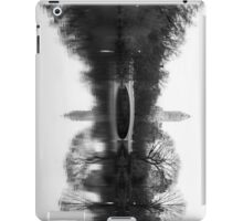 A Mirrored lake iPad Case/Skin