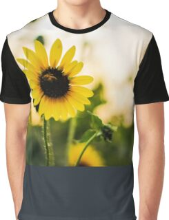 Sunflowers and blurred background Graphic T-Shirt