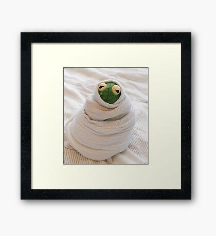 Snug Kermit Framed Print