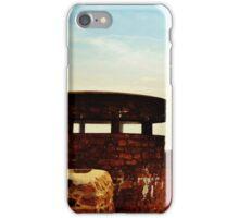 Castle in the Sky iPhone Case/Skin