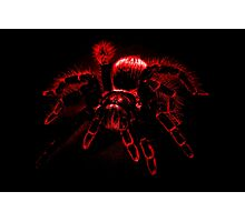 Big Hairy Abstract Nope Photographic Print