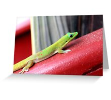 Gold dust day gecko Greeting Card