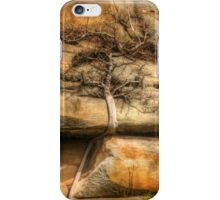 Ficus Espaleatus .. Survival on the rocks iPhone Case/Skin