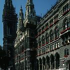 Marj looking at Rathaus, Vienna Austria 19840803 0003  by Fred Mitchell