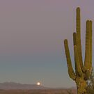 Four Peaks Moonrise by Mike Herdering