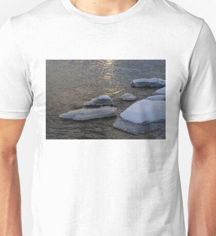 Icy Islands - Glossy Grays and Golds on the Lake Unisex T-Shirt