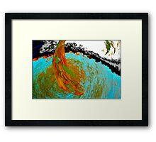 2014 Fall 30 Framed Print