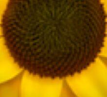 Sunflower Emoji Sticker