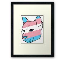 Trans Big Cat Framed Print