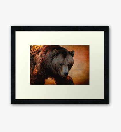 Grizzly Bear Painted Framed Print