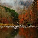 Resounding Colors Along the Stream by PineSinger