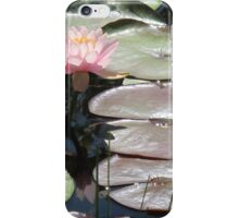 Pink Water Lily (1) iPhone Case/Skin