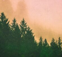 Fog Forest - Cascadia Green Trees and Sunset Sticker