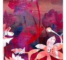 Poppy Pink Love Photographic Print