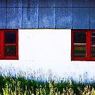 red-framed windows by Lynne Prestebak