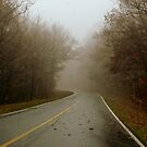 Blue Ridge (in the Fog) - II    ^ by ctheworld