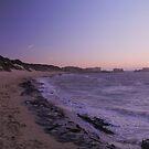 Beach Rogue by garts
