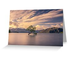 Willow Tree, Lake Wanaka Greeting Card