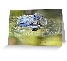 Gator Eye (Alligator mississippiensis) Greeting Card
