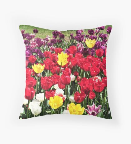 Floriade Flowers 2 Throw Pillow