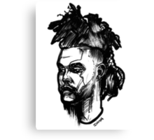 A Mohawk for The Weekend Canvas Print
