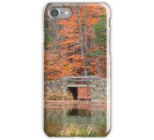 Stone Bridge in Autumn iPhone Case/Skin