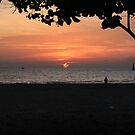 Sunset in Borneo by bevy111