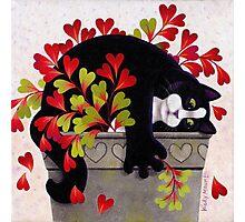 Love Pot Photographic Print