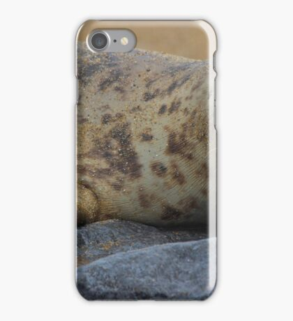 Baby Seal iPhone Case/Skin